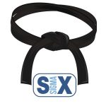 six sigma training, black belt, six sigma, 6sigma.us