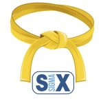 yellow belt, six sigma, 6sigma.us