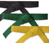 Six Sigma, Lean Six Sigma, Consulting, Practitioner, Professional, Certification, Black Belt, Green Belt, Yellow Belt, Master Black Belt