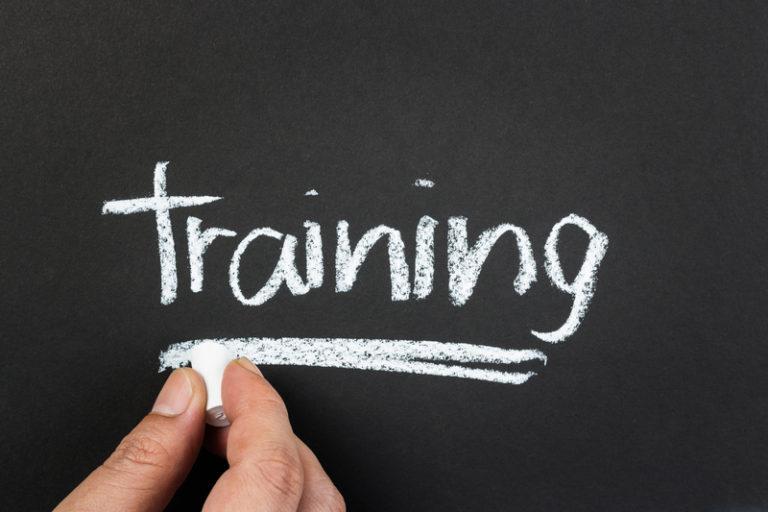 dfss training